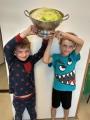 Davis cup - vítězové